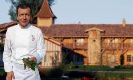Wild garlic: chef Masse's touch